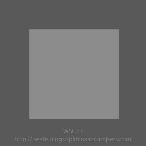 wsc-_23.jpg