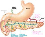 beating-pancreatitis