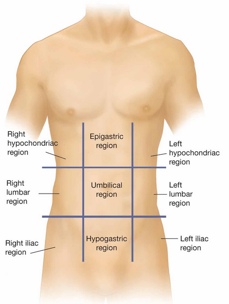 Anterior abdominal wall and surface anatomy beating pancreatitis leave a comment ask a question or flip me the bird cancel reply ccuart Gallery