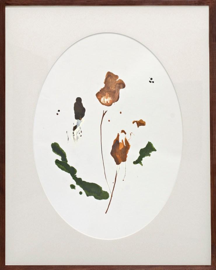 herbarium2-04