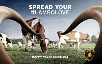 """Lamborghini, post per San Valentino, """"Cows"""". Headline """"Spread your lambolove"""". CW Beatrice Furlotti, AD Pietro Lena."""