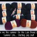 Summer 2015 CAL Yarn Winner!!!