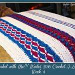Crochet With Me!! Winter 2016 Crochet-A-Long… Week 4