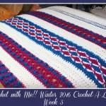 Crochet with Me!! Winter 2016 Crochet-A-Long… Week 5!!