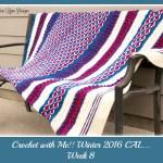 Crochet with Me!! Crochet-A-Long… Week 8