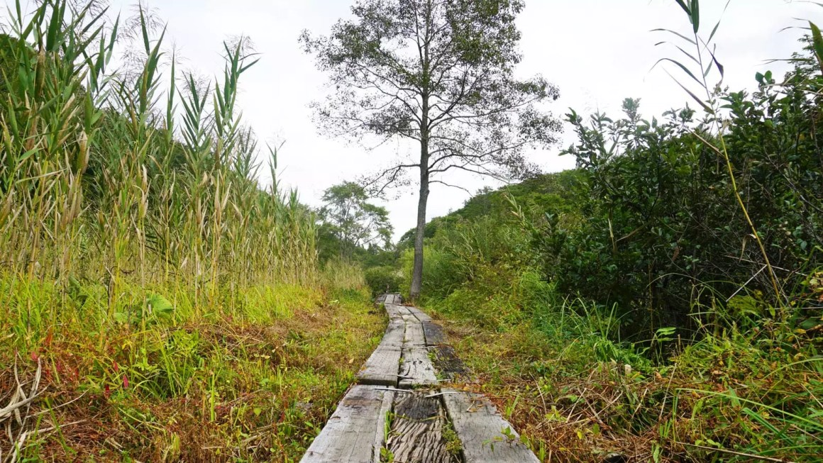 Shinetsu trail