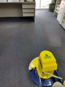 Carpet Cleaning Loxton
