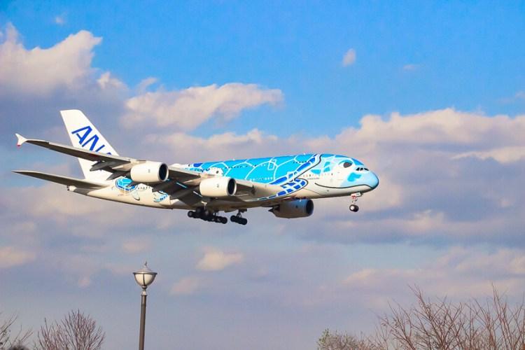 ANAのエアバスA380 フライングホヌ