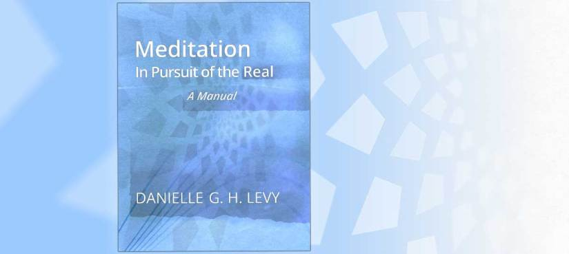 "book title ""Meditation in Pursuit of the Real"" by Danielle G H Levy, in white typeface over blue field"