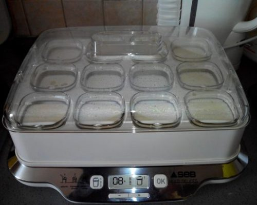 Fabriquer tous vos yaourts avec la yaourtière Seb Multidélices