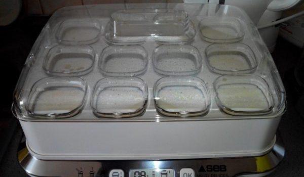 Fabriquer tous vos yaourts avec la yaourtière Seb Multi-Délices