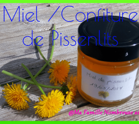 Miel de pissenlits ou Cramaillote {Recette}