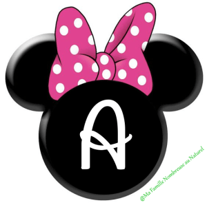 diy fanion / guirlande minnie mouse