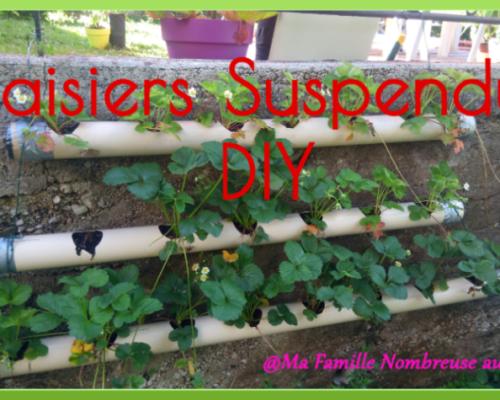 Des fraisiers suspendus {DIY}