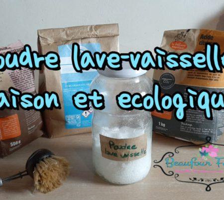 Poudre lave vaisselle maison et écologique {DIY} version modifiée