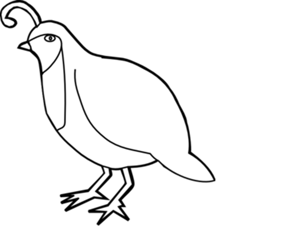 Husband Coloring Coloring Pages