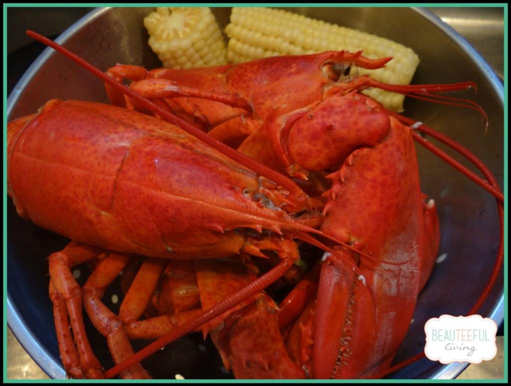 lobsterandcorn