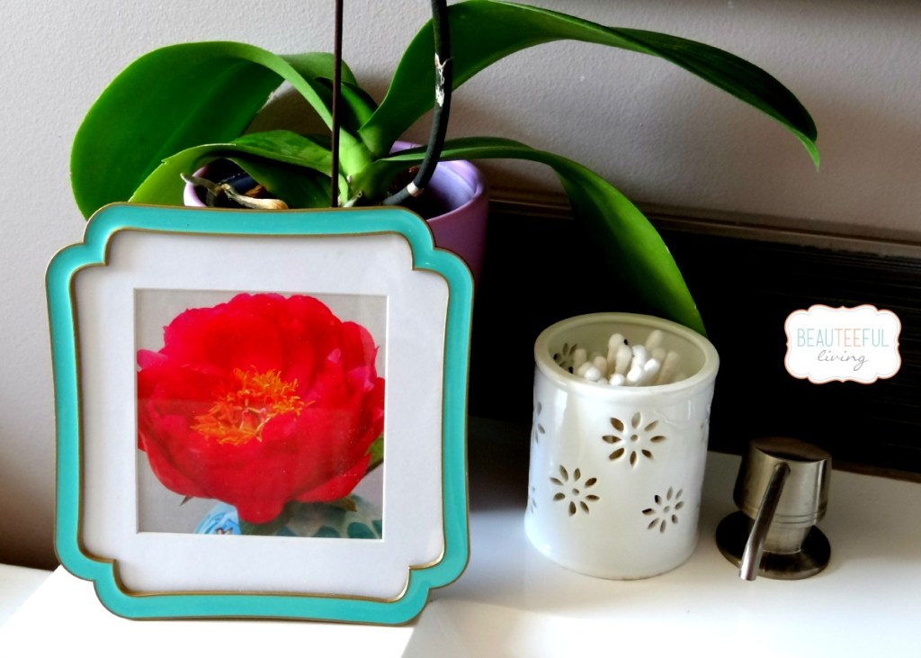 picture frame of peony