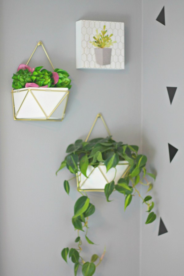 Hanging plant wall display - Beauteeful Living