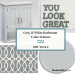 Gray and White Bathroom Color Scheme – ORC Week 2