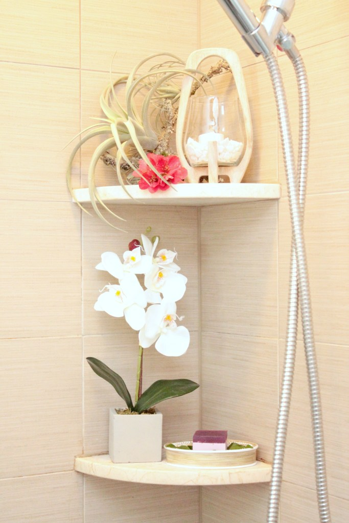 Orchids and air plant - Beauteeful Living