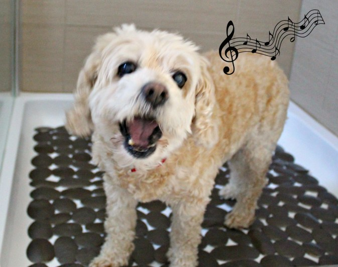 Roxie singing - Beauteeful Living
