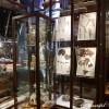 シーボルトハウスとミーケ・デ・ワール展|オランダ アムステルダム・ライデン観光 (4)
