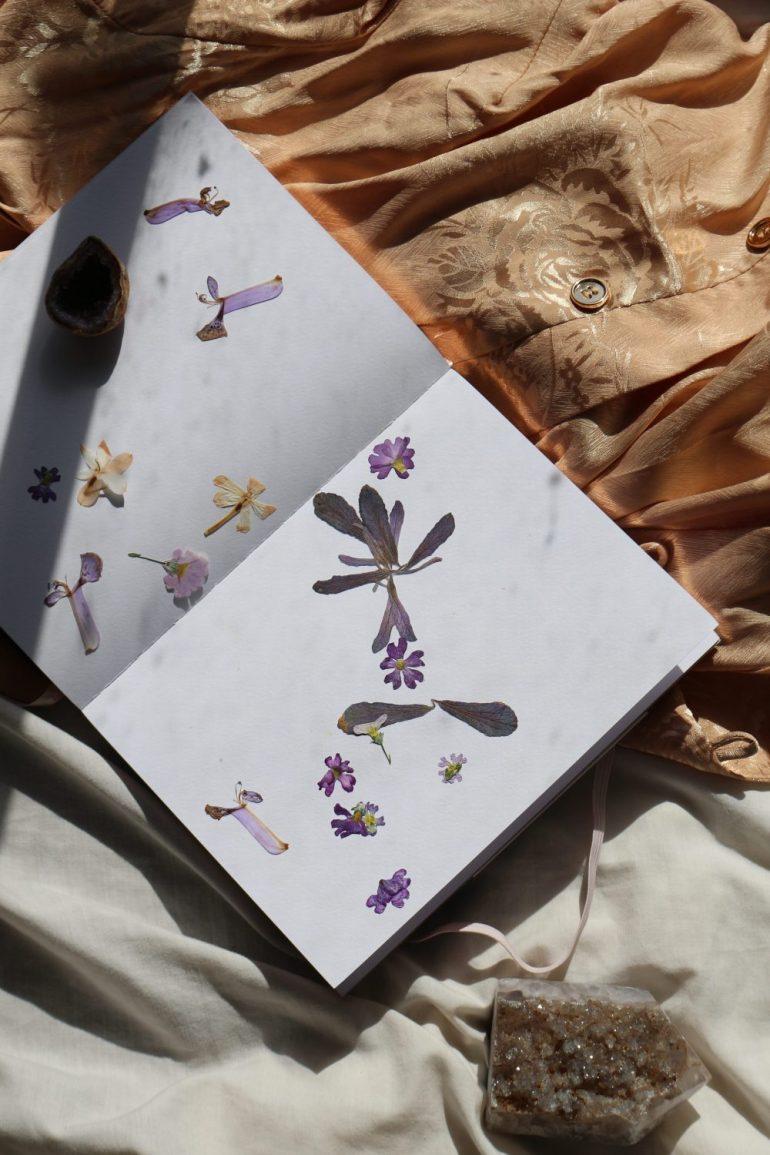 pressed flowers in journal