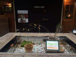 jurins geo 300x225 - 秩父のカフェに行くなら超穴場&デートスポットに最適な「jurin`s geo」に決まり