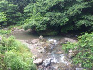 image 52 300x225 - 埼玉県飯能市の名栗川渓流釣り情報