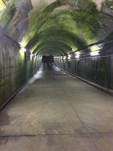image 18 e1473235166978 225x300 - 関東で最も謎な秘境「旧湯檜曽駅」