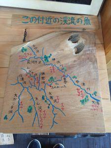 image 8 e1475993084901 225x300 - 秩父の中津川で渓流釣り