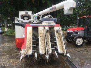 img 4726 300x225 - [:ja]雨の日の農作業は?[:en]雨の日の農業は[:]