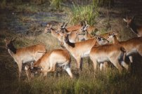 moniquedecaro_namibia-0021