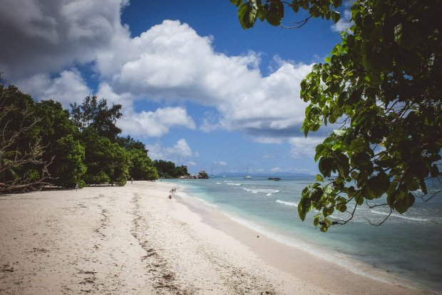 moniquedecaro-5535-seychelles