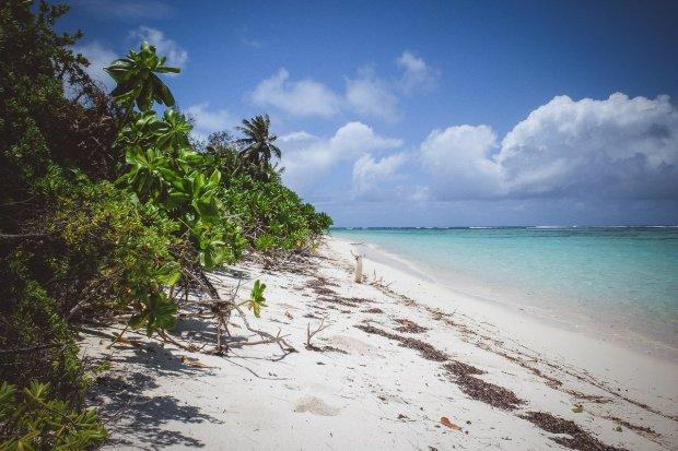 moniquedecaro-6036-denis-private-island