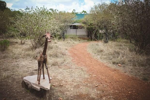 moniquedecaro-mara-bush-camp-kenia-5052
