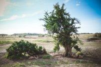 moniquedecaro-mara-bush-camp-kenia-5746