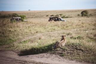 moniquedecaro-mara-bush-camp-kenia-5846