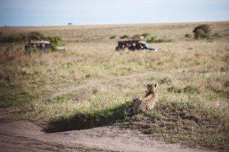 moniquedecaro-mara-bush-camp-kenia-5846
