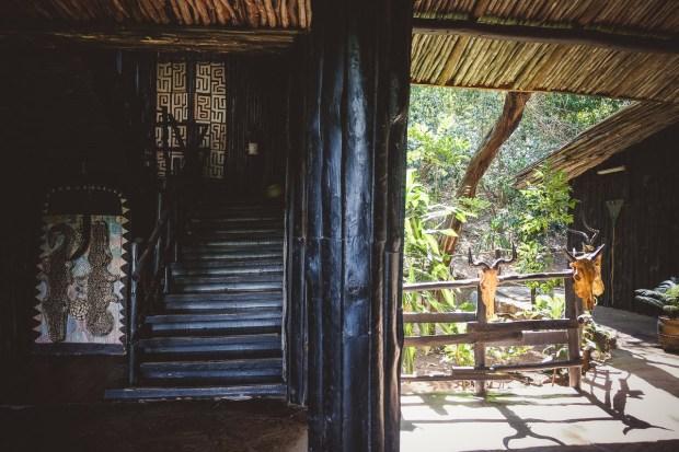 moniquedecaro-shimba-hills-7113
