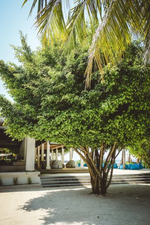 moniquedecaro_velassaru_maldives-2759