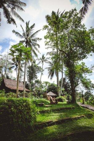 moniquedeacaro-bali-4778-bambu-indah