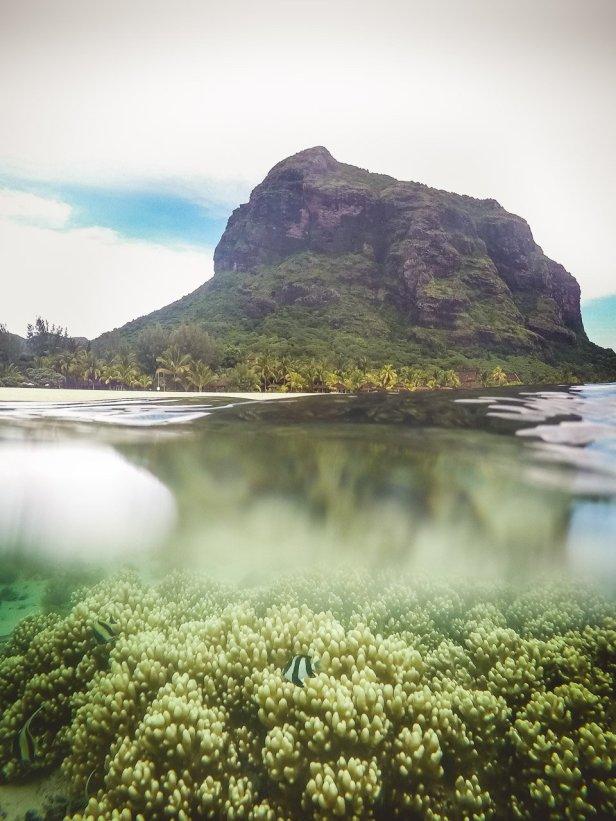 Dinarobin Beachcomber Mauritius - Monique De Caro