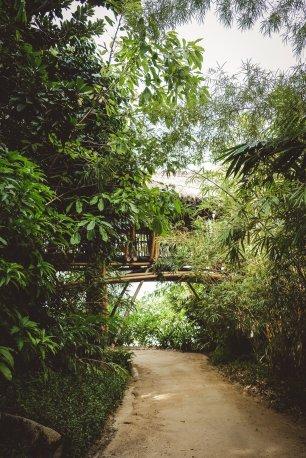 moniquedecaro-cempedak_island-4405
