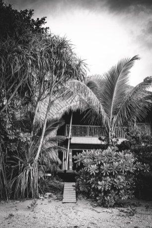 moniquedecaro-cempedak_island-4561