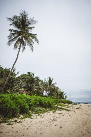 moniquedecaro-nikoi-island-4913