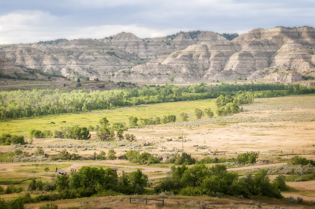 The North Unit of the Theodore Roosevelt National Park is across the Little Missouri River from the CCC Campground and the Long X trail.