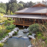 Photo tour of Japanese Friendship Garden canyon.