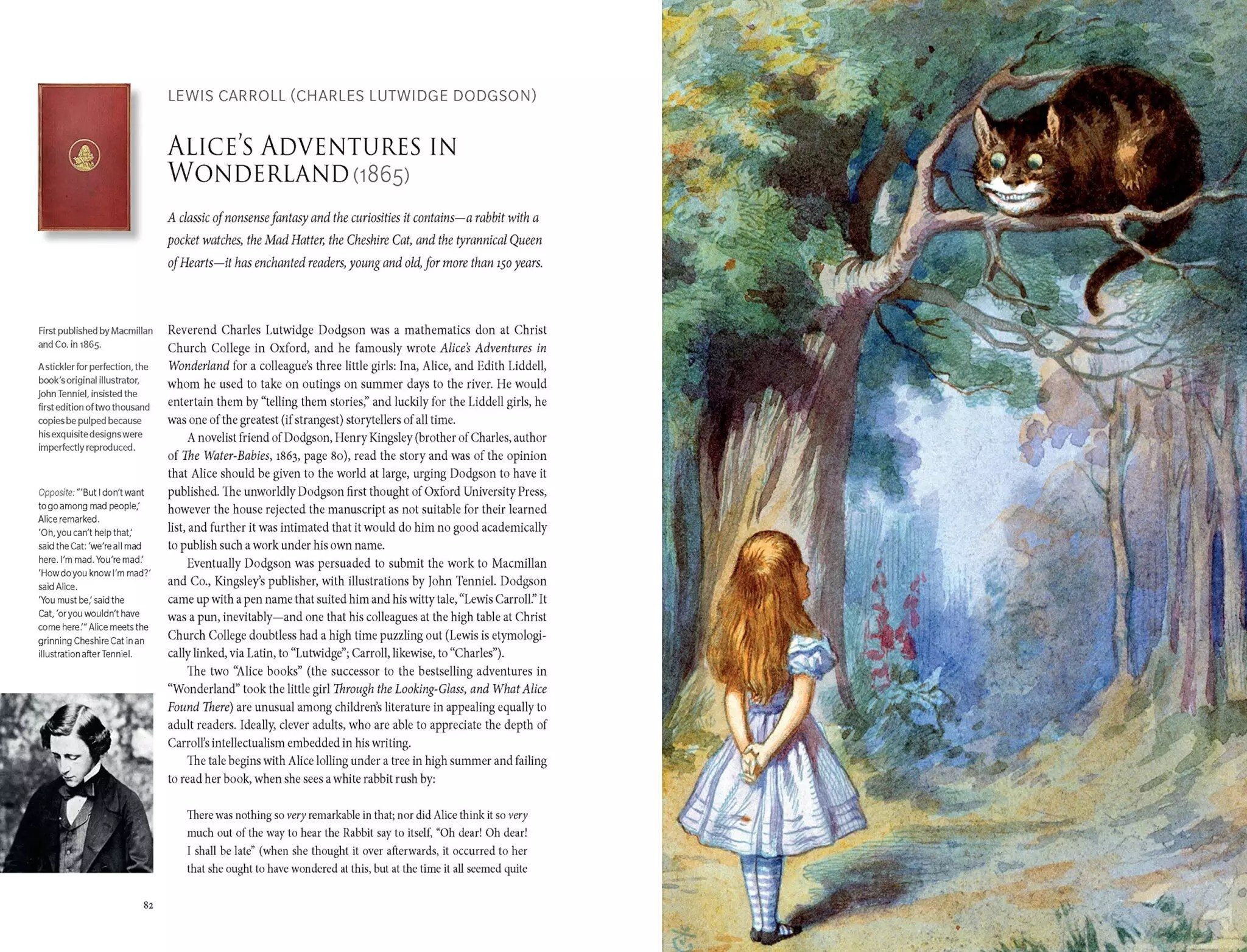 literary wonderlands laura miller alice in wonderland